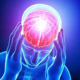 činnosť mozgu