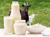 kozie mlieko