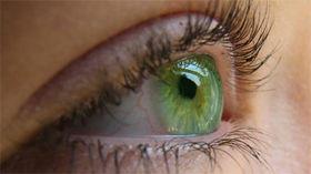 Výživa očí