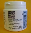 HLIVA USTRICOVÁ - 90 tabliet po 500 mg