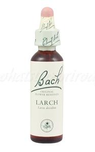 Larch - Smrekovec opadavý 20 ml - bachove kvapky