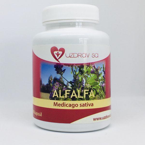 Alfalfa - lucerna 90 cps