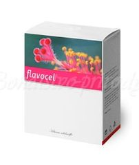 Flavocel (Energy)