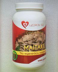 Maitake - huba