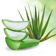 Aloe Vera šťava x2 + Aloe tablety