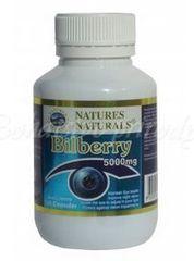 Bilberry - čučoriedka, 100kps