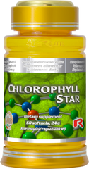 Chlorophyll star - chlorofyl