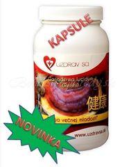 REISHI (Ganoderma Lucidum) - 100% čistá sušená plodnica, 90kapsúl