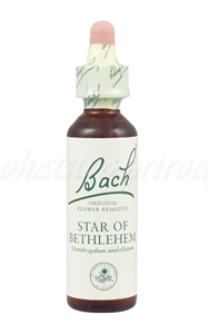 Star of Bethlehem - Bledavka chocholíkatá 20 ml - bachove kvapky